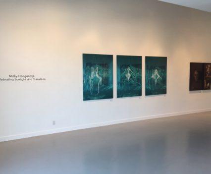 Celebrating Sunlight and Transition Micky Hoogendijk