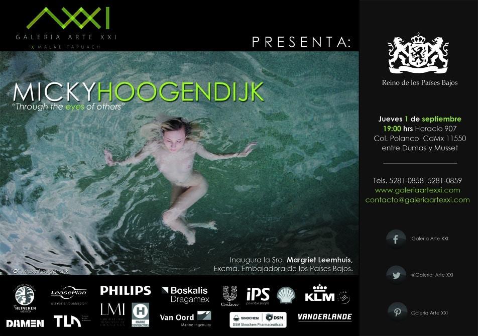 Micky Hoogendijk web